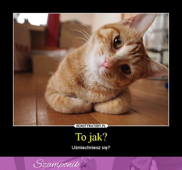 Szamponik.pl - Uśmiechnij się! :)